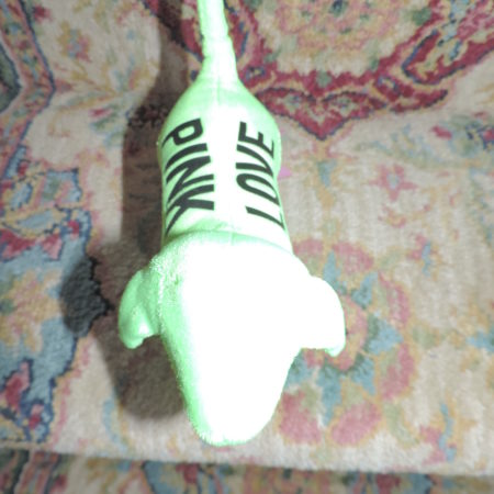 PINK  Neon Green Dog NEW