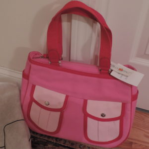 Red/Pink Canvas Handbag NEW